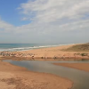 Descobrir el Delta del Llobregat ahora es más fácil con las nuevas guías de naturaleza