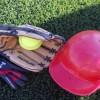El Club Beisbol Viladecans i el Projecte Softball de Gavà campió i subcampió respectivament, del Campionat d'Espanya