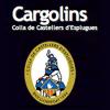 Los Castellers de Esplugues tendran que esperar a septiembre para conseguir el 3 de 7 levantado por debajo