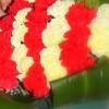 Demà se celebra la tradicional ofrena floral davant la tomba de Rafael Casanova a Sant Boi