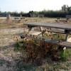 Les subvencions de la Generalitat a medis naturals es retrassen i afecten a les reserves del Delta del Llobregat