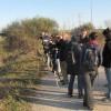 III Cens alternatiu d'ocells hivernants al Delta del Llobregat 2013