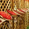 Es presenta la 35ª Festa de la Cirera de Torrelles que es celebrarà aquest cap de setmana