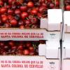 La #BaixEscapada de la setmana: 32a Festa de la Cirera de Santa Coloma de Cervelló