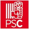 Radiografia del Socialisme al Baix Llobregat: del 2008 a les actuals primàries