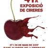 Avui diumenge clou la 41a Exposició de Cireres de Sant Climent