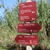 Sant Boi rep una subvenció de 450.000 euros per millorar l'entorn del riu Llobregat