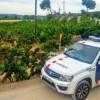 La campanya de vigilància de robatoris de la fruita dolça al Baix Llobregat Nord, ha estat positiva