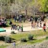Torna la festa del Riu de Cornellà per gaudir en familia