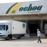 Transportes Ochoa