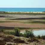 platja de Ca l'Arana