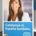 campanya ppc